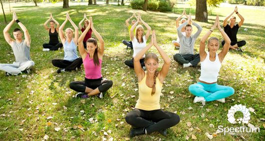 group of people doing yoga in a park